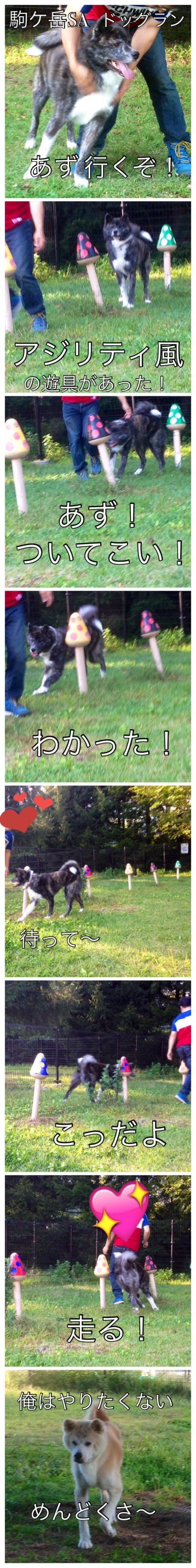 ③駒ケ岳SA